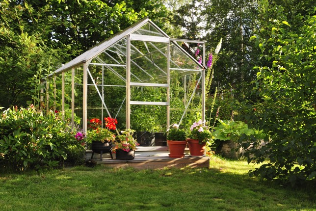 Greenhouse Glass